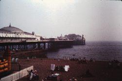 Brighton 82